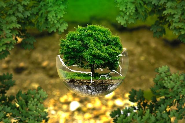 Ett hållbart samhälle